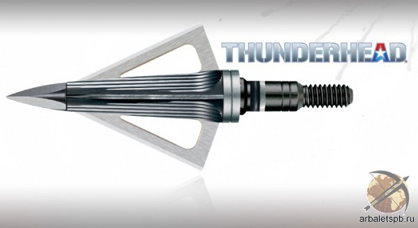 Наконечник NAP Thunderhead 100gr (5 шт)